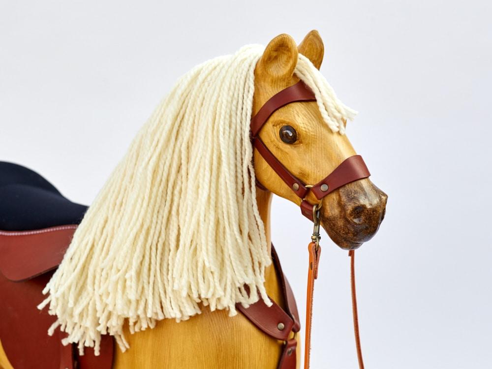 Hlava koníka Čenda 53 Izabela s bílou hřívou